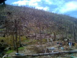 Day Two Devastated landscape Road to Samar Island PIC 1