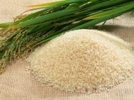 Rice Phil