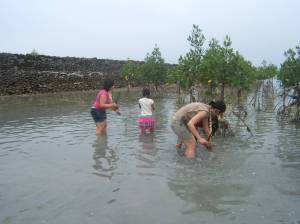 (left to right): Jeselle Santiago and Stephanie Camba planting mangrove trees